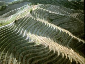 priorat_slopes